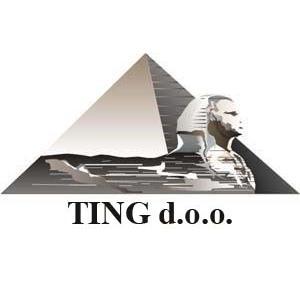 TING doo logo.jpg